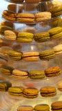 Macaron coloful efterrätt Royaltyfria Bilder