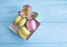 Color macaron gourmet biscuit in a box on a blue wooden background, confectionery alstroemeria flower Royalty Free Stock Photos