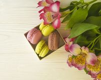 Macaron color pastry served in a box on bakery white wooden background alstroemeria flower. Macaron color in a box on a white wooden background alstroemeria Stock Photography