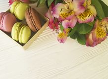Macaron color pastry in a box on bakery white wooden background alstroemeria flower. Macaron color in a box on a white wooden background alstroemeria flower Stock Image