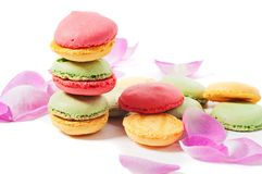Macaron cookies and pink rose petals Royalty Free Stock Image