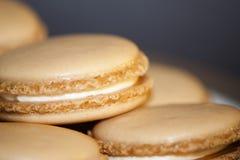 Macaron de la vainilla Imagen de archivo