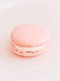 Macaron de Rose sur un fond rosâtre Photos libres de droits