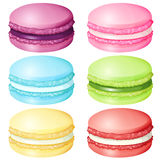 Macaron in different flavor Stock Images