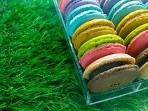 Macaron dulce Imagen de archivo libre de regalías