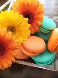 Macaron, ein französischer Konfektionsartikel von Eiweißen lizenzfreie stockbilder