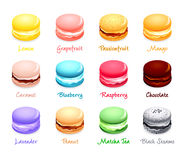 Macaron flavors. Colorful french macaron cookies with different flavors Stock Image
