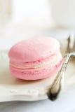 Macaron francese Immagini Stock Libere da Diritti