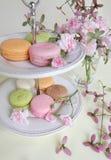 Macaron i różowi roes Fotografia Stock