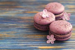 Macaron or macaroon french coockie on dark blue  background with purple flowers, pastel colors. Flat lay. Food concept. Sweet and colourful french macaroons or Stock Photos