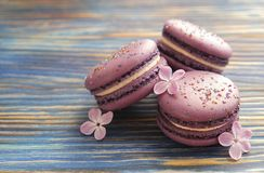 Macaron or macaroon french coockie on dark blue  background with purple flowers, pastel colors. Flat lay. Food concept. Sweet and colourful french macaroons or Stock Image