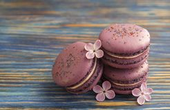 Macaron or macaroon french coockie on dark blue  background with purple flowers, pastel colors. Flat lay. Food concept. Sweet and colourful french macaroons or Stock Photography