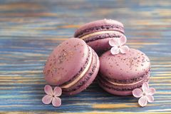 Macaron or macaroon french coockie on dark blue  background with purple flowers, pastel colors. Flat lay. Food concept. Sweet and colourful french macaroons or Stock Photo