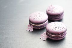 Macaron or macaroon french coockie on graphite background with purple flowers, pastel colors. Flat lay. Food concept. Tasty colorful macaroons in marble Stock Photo