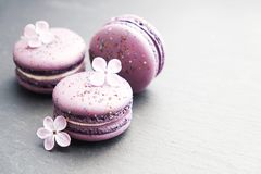 Macaron or macaroon french coockie on white textured background with spring lila flowers, pastel colors. Tasty colorful macaroons in marble background. Text Royalty Free Stock Image