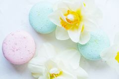 Macaron or macaroon french coockie on white textured with spring sakura flowers, pastel colors. Tasty colorful macaroons in marble background. Text space Royalty Free Stock Image