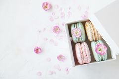 Macaron or macaroon french coockie on white textured with spring sakura flowers, pastel colors. Tasty colorful macaroons in marble background. Text space Stock Image