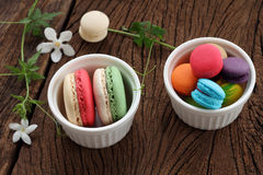 Macaron multi color. Stock Images