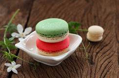 Macaron multi color. Royalty Free Stock Images