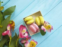 Macaron in una scatola su un fondo di legno blu, fiore di alstroemeria Immagine Stock Libera da Diritti