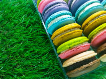 Macaron variopinto Fotografie Stock