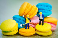 Macaron working Royalty Free Stock Image