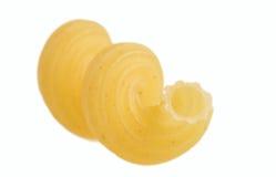 Macaroni. royalty-vrije stock fotografie