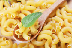 Macaroni and basil in wooden spoon Royalty Free Stock Photography