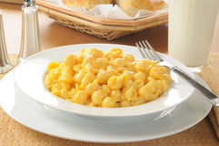 Macaroni and cheese with biscuits Stock Images