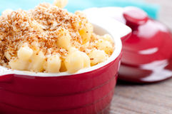 Macaroni with cheese and breadcrumb topping. Macaroni and cheese noodles in single serving size with breadcrumb topping Royalty Free Stock Photography
