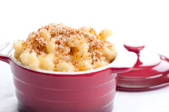 Macaroni with cheese and breadcrumb topping. Macaroni and cheese noodles in single serving size with breadcrumb topping Stock Images