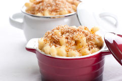 Macaroni with cheese and breadcrumb topping. Macaroni and cheese noodles in single serving size with breadcrumb topping Royalty Free Stock Images