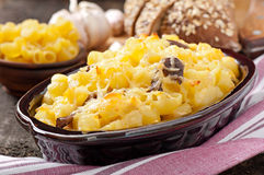 Macaroni with cheese, chicken and mushrooms Royalty Free Stock Photography