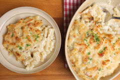 Macaroni Cheese or Gratin Serving Royalty Free Stock Images