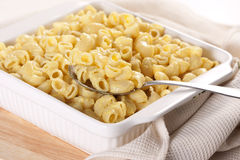 Macaroni en kaas royalty-vrije stock foto's
