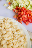 Macaroni and ingredient Royalty Free Stock Image