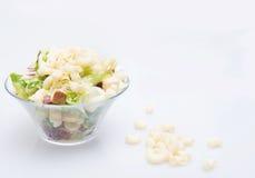 Macaroni italian paste salad Stock Photography
