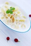 Macaroni with milk Stock Image