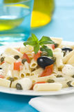 Macaroni mozzarella olives capers tomatoes salad Stock Images