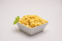 Macaroni Pasta. Cooked macaroni in bowl on white background Stock Image