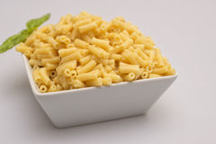 Macaroni Pasta. Cooked macaroni in bowl on white background Stock Photos