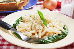Macaroni pasta with galic and silverbeet Royalty Free Stock Photography