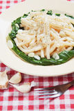 Macaroni pasta with galic and silverbeet Stock Photography