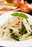 Macaroni pasta with silverbeet Royalty Free Stock Photo
