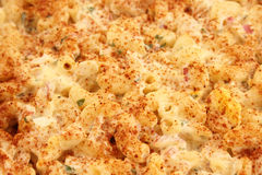 Macaroni Salad Background Royalty Free Stock Photography