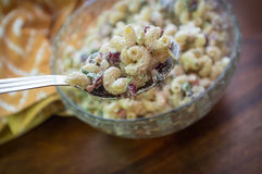 Macaroni Salad Server Stock Images