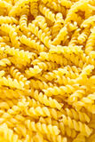 Macaroni texture. Macaroni close up. Image is filled with macaroni texture Royalty Free Stock Photography