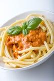 Macaronie con la salsa de tomate Foto de archivo libre de regalías