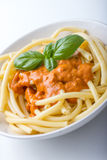Macaronie with tomato sauce Royalty Free Stock Photo