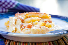 Macaronis au fromage faits maison Photographie stock libre de droits